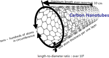 carbon nano tube structure