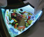 flexible substrate applied display panel