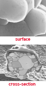 surface and cross section of cathode
